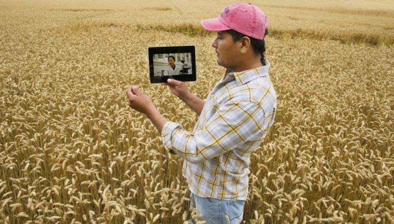 Entenda como a tecnologia está facilitando o dia a dia do trabalhador rural - Ecotelecom Vivo Empresas
